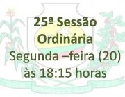 25ª Reunião Ordinária